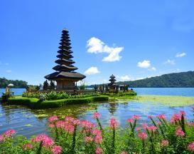 تور ترکیبی بالی ( 2 شب اقامت در منطقه جنگلی + 5 شب اقامت در منطقه ساحلی ) )